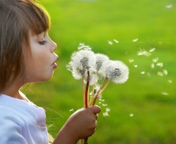 Girl-blowing-dandelion-seeds